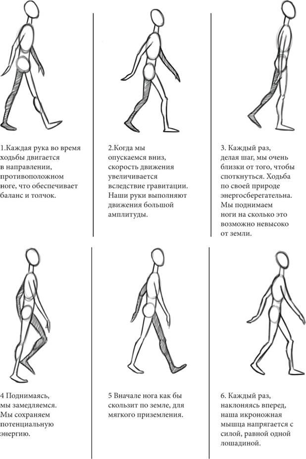 Описание: E:\диссертация нарта\материалы\photos for thisis\walking .jpg