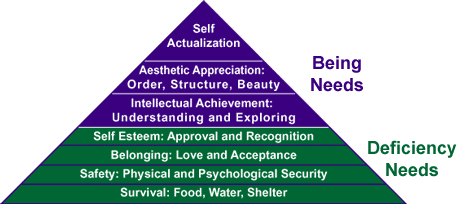 Maslow Hierarchy of Needs.gif