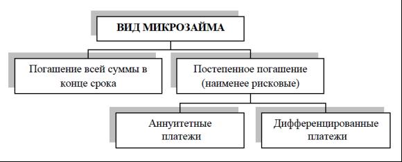 Виды микрокредитов в россии