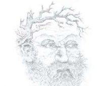 G:\конференции\2013\алгебра геометрия никифоровой дарьи\работа\сдача\город..область\имп арт.jpg