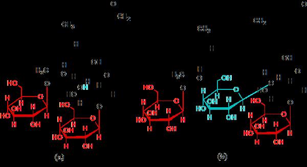 Стевиозид и Ребаудиозид А.png