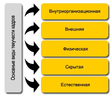 Основные виды текучести кадров меньше шрифт-min.png