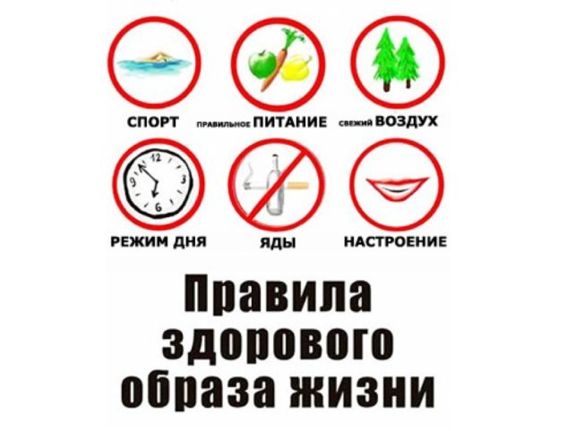 https://ds02.infourok.ru/uploads/ex/00e6/00013965-4169224e/2/img6.jpg