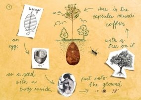 new-concept-biodegradable-coffin-burial-memorial-forest (2)