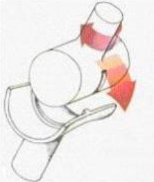Картинки по запросу мыщелковый двухосный сустав