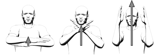Движения руками как биангулярные связи .