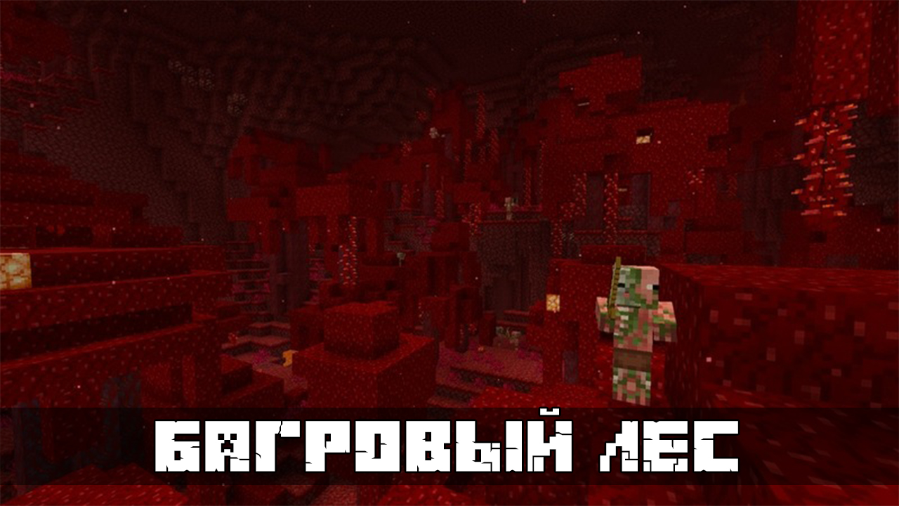 Багровый лес в Майнкрафт 1.16.40