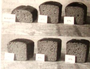 Образцы хлебобулочных изделий с добавлением подсолнечного масла