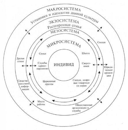Экологическая модель влияния среды по Бронфенбреннера