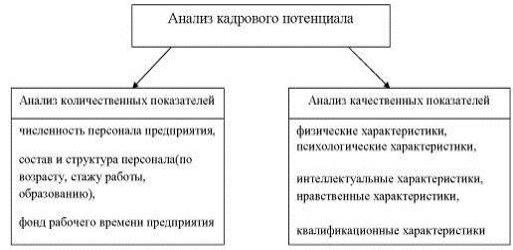 Направления анализа кадрового потенциала