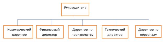Схема организационной структуры, включенная в руководство