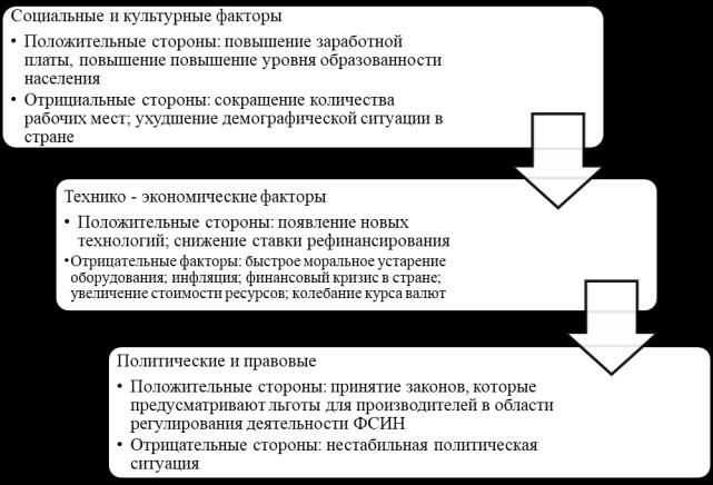 STЕР-анализ окружающей среды УФСИН России по Московской области