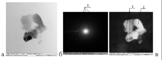 Микрофотографии состояния перегородок гранул с содержанием глины в шихте 20 % (х40000)