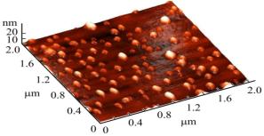 АСМ изображение тонкопленочного гетероперехода n-ZnO/p-Si