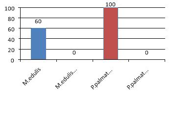 Выживаемость объектов под воздействием ОММ и без в опыте, %