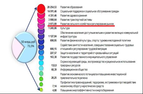 Программные расходы бюджета Амурской области на 2019 г.