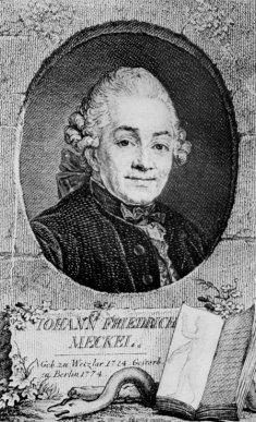 http://www.universitaetssammlungen.de/wpdimg/Johann_Friedrich_Meckel%2C_the_Elder.jpg