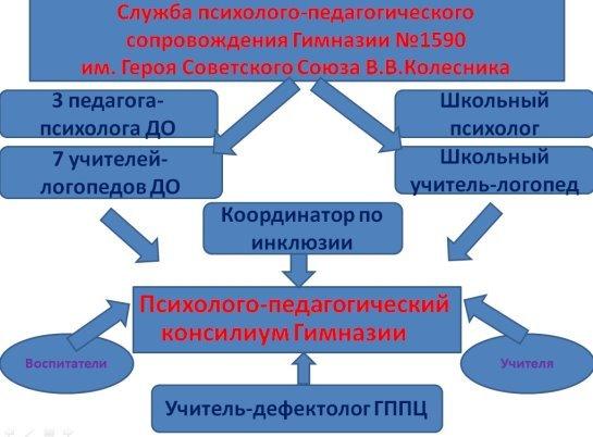 структура ППк.jpg