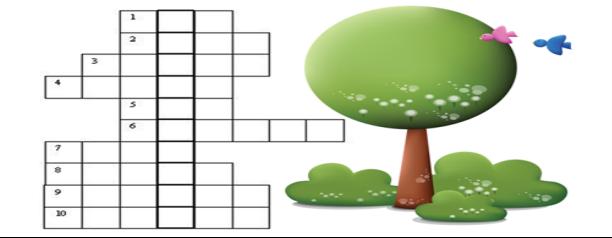 Кроссворд «Деревья и кустарники»