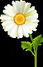 http://img-fotki.yandex.ru/get/9312/47407354.c87/0_12be3a_b3503a56_orig.png