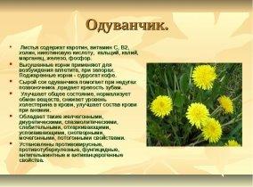 https://healthilytolive.ru/wp-content/uploads/2016/10/polza_oduvanchika-3.jpg