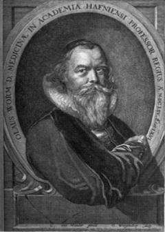 Описание: Worm 1588-1654.png