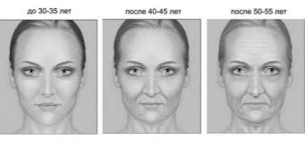 Картинки по запросу изменение черт лица с возрастом