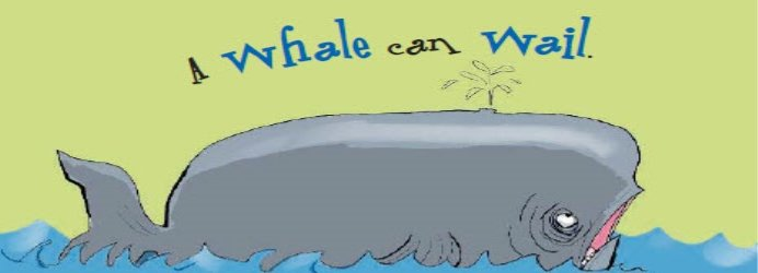 whale-can-wail
