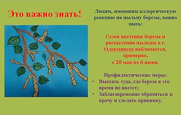 C:\Users\Галина\Desktop\Я - ИССЛЕДОВАТЕЛЬ\Денис БЕРЕЗА\Листовка.png