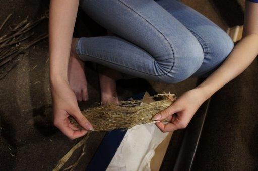 Скручивание волокон