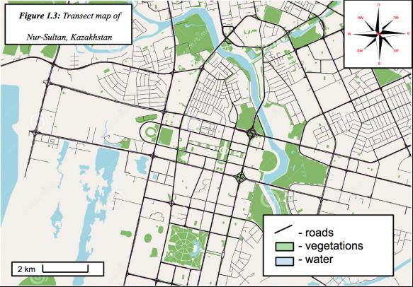 Transect map of Nur-Sultan, Kazakhstan (Tukhtarev, 2019)