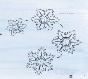Описание: Иллюстрация 6 из 62 для Снег. Зимнее чудо - Кассино, Нельсон | Лабиринт - книги. Источник: Лабиринт