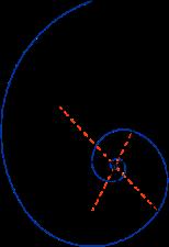 https://upload.wikimedia.org/wikipedia/commons/thumb/b/b9/Golden_triangle_and_Fibonacci_spiral.svg/220px-Golden_triangle_and_Fibonacci_spiral.svg.png
