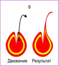 http://shop.pechatitut.ru/media/Ebru/Sekreti/Tulpan/tulpan_5_ok.gif