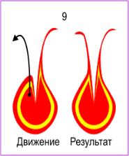http://shop.pechatitut.ru/media/Ebru/Sekreti/Tulpan/tulpan_6_ok.gif